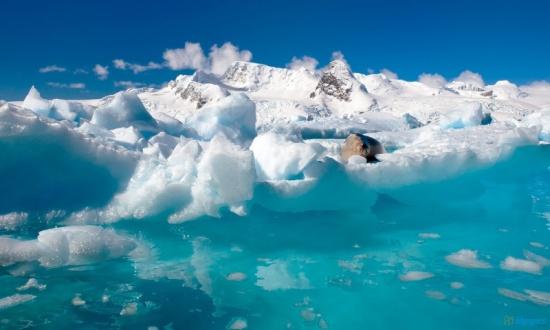 antarctik (2)