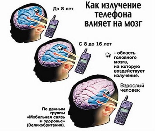 Как влияет мобильный телефон на мозг человека?